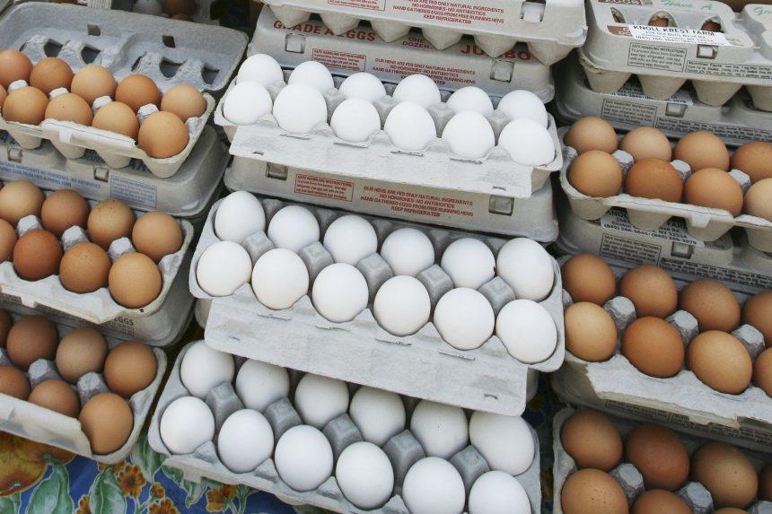 Как да изберем яйца